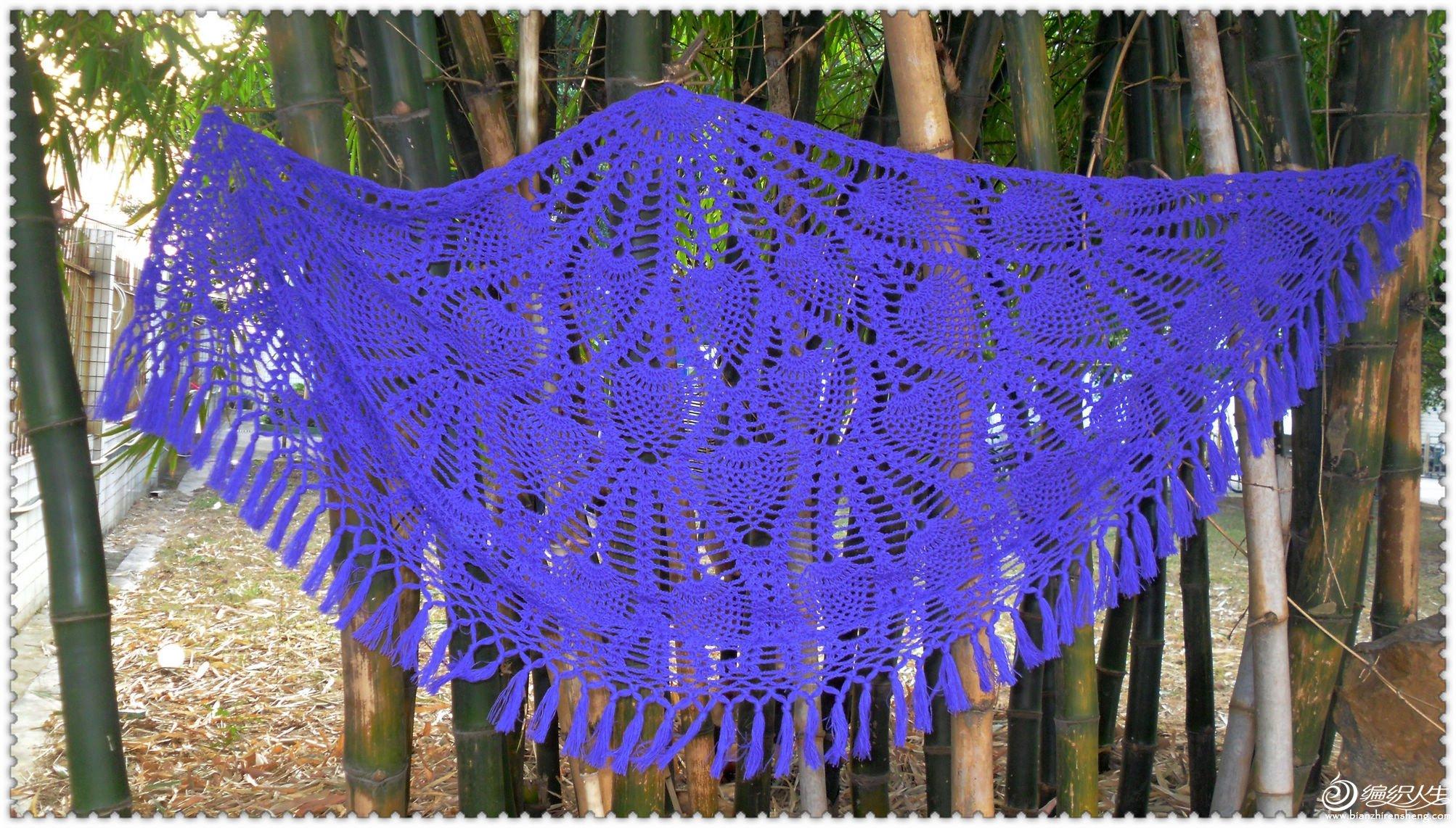 紫翼5.jpg