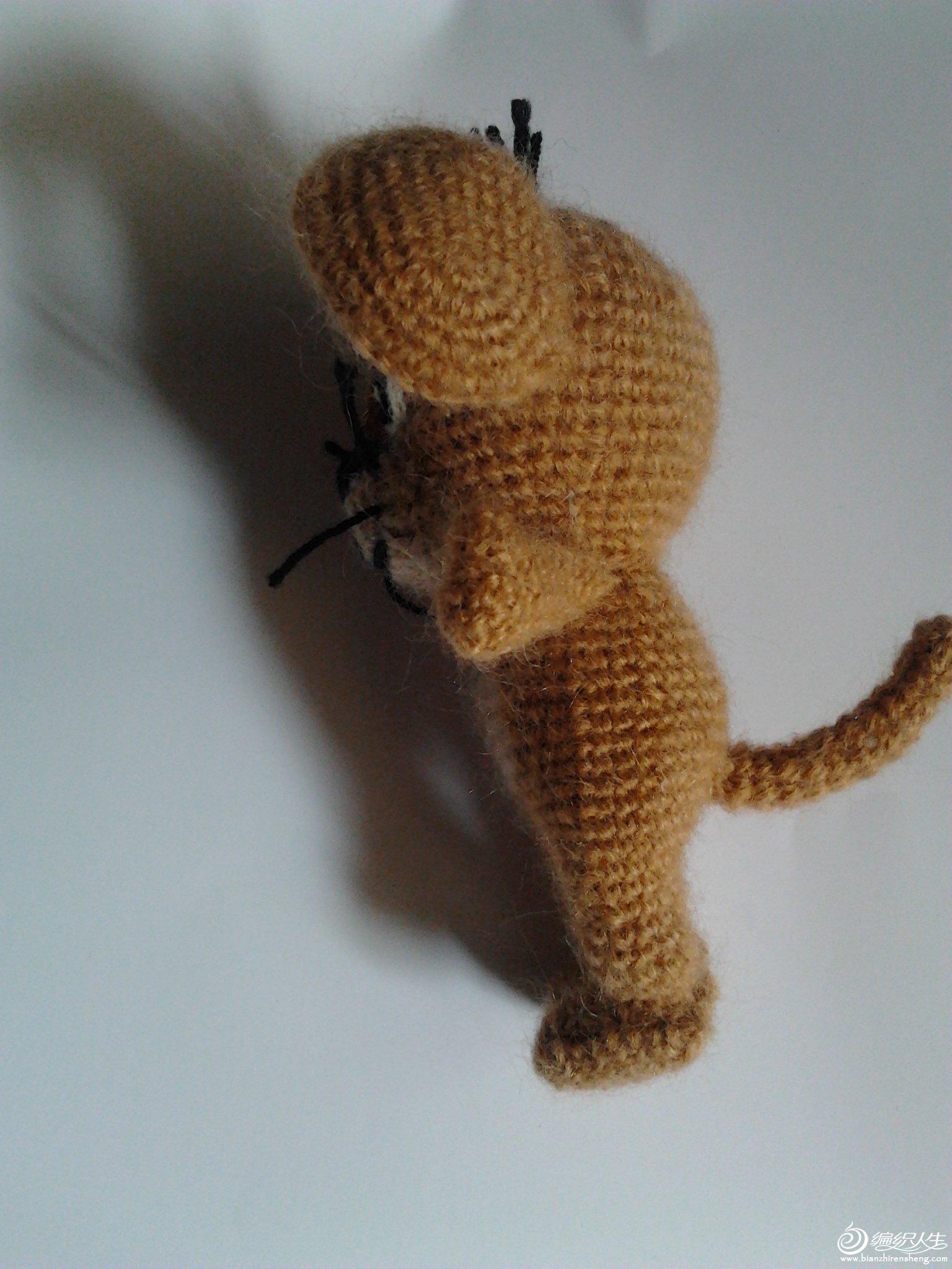 小老鼠杰瑞