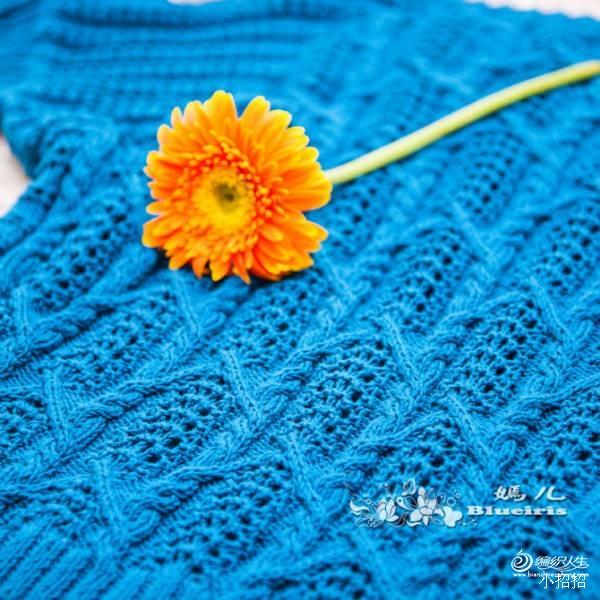 [套头衫] blueiris嫣儿手工---悠然 - yn595959 - yn595959  彦妮