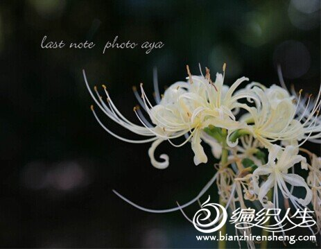 QQ图片20140624161752.jpg