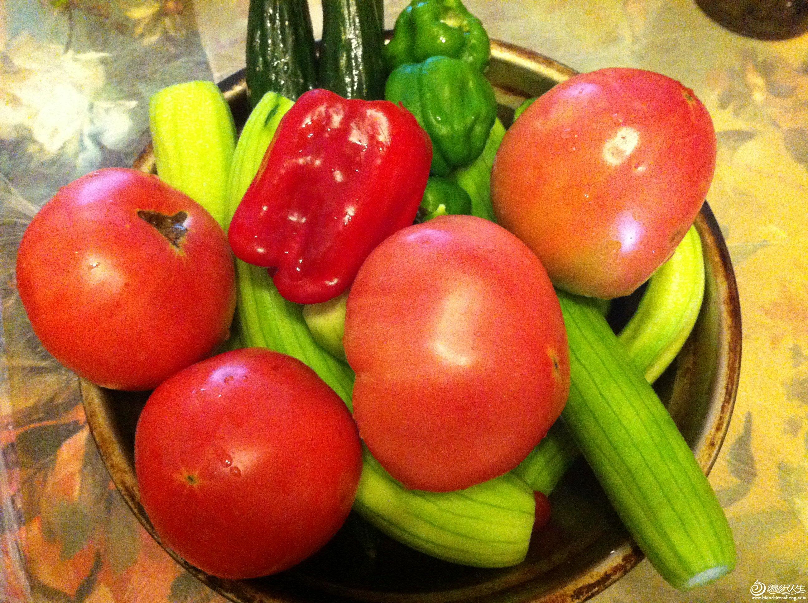 论坛 69 生活休闲区 69 休闲聊天区 69 水果蔬菜餐    马上注册