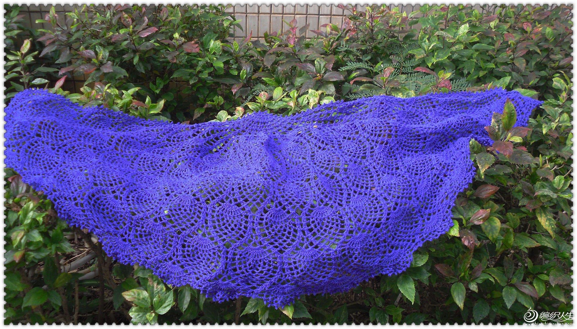 紫萝4.jpg
