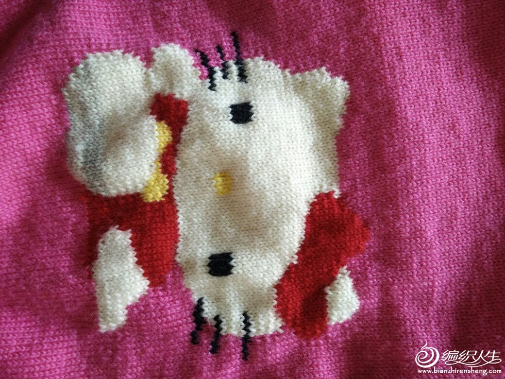 动物的花毛衣手绘