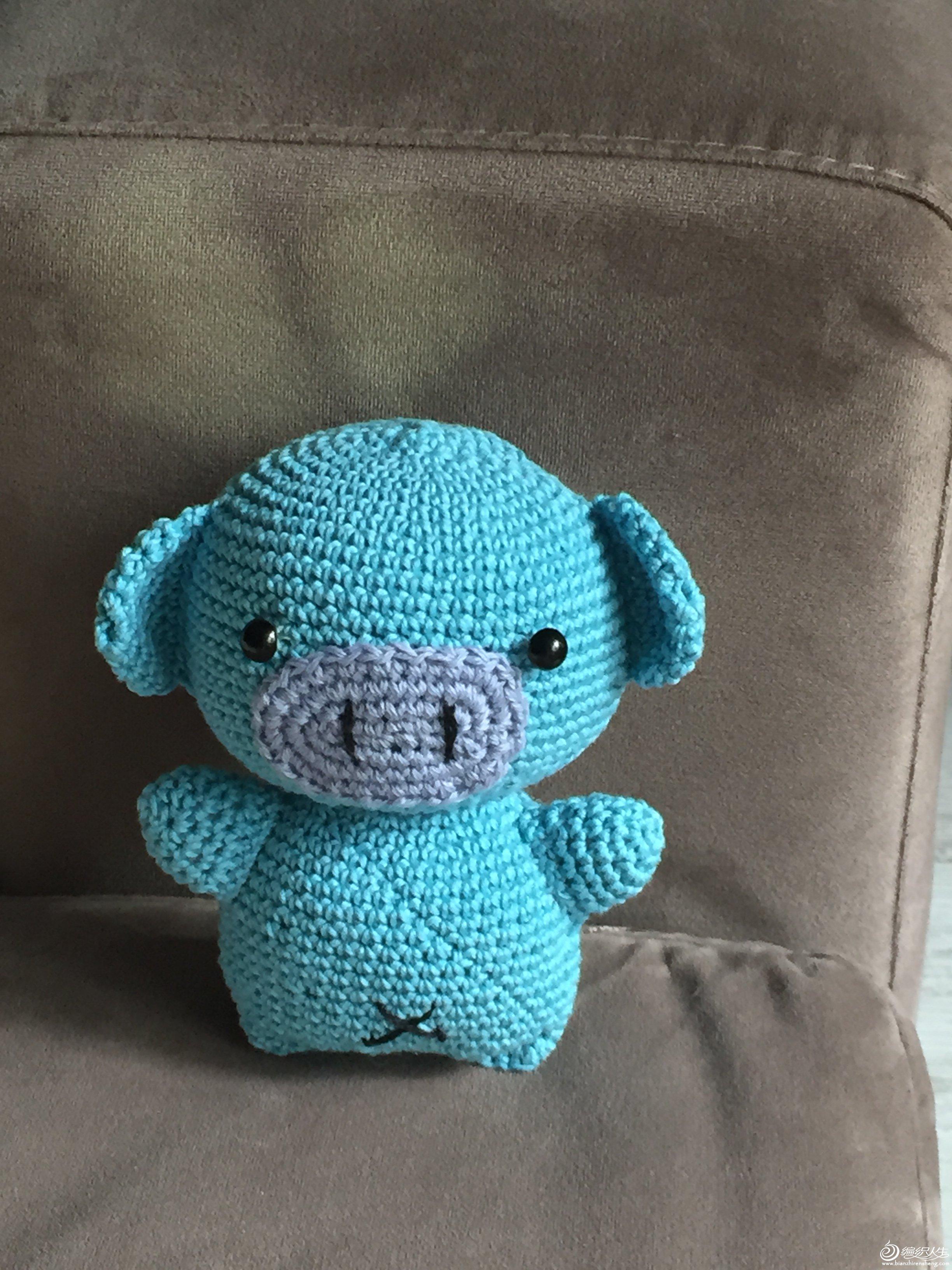 一只可爱的小猪