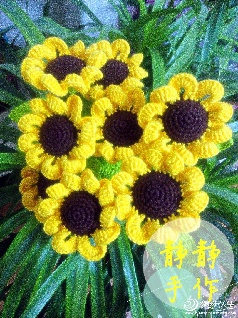 向日葵别名太阳花,因花序随太阳转动而得名。向日葵花语为信念、光辉、高傲、忠诚、爱慕,仰慕、凝视着你。向日葵的寓意是沉默的爱,向日葵代表着勇敢地去追求自己想要的幸福。 向日葵的花姿虽然没有玫瑰那么浪漫,没有百合那么纯净,但它阳光、明亮,爱得坦坦荡荡,爱得不离不弃,有着属于自己的独特魅力,而且,它绽放的不仅是爱情,还有对梦想、对生活的热爱。