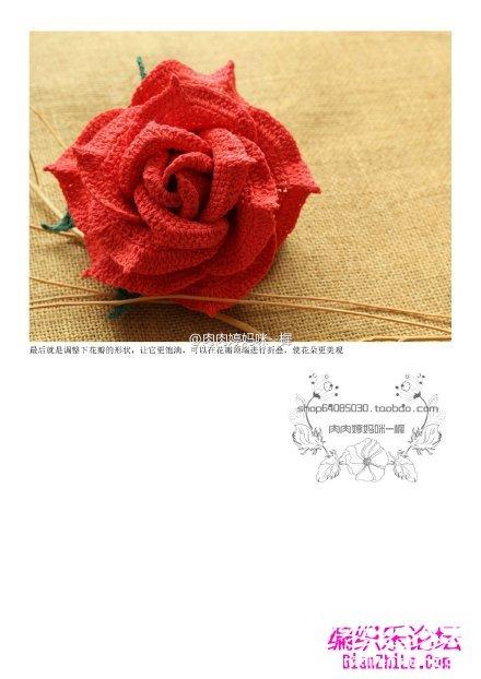 玫瑰花4.jpg