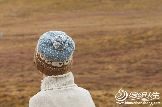 hat_crop1_medium2.jpg
