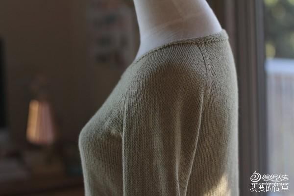新手可织的圆领套头衫,Lila,包臀 - yao064 - 众里寻他千百度