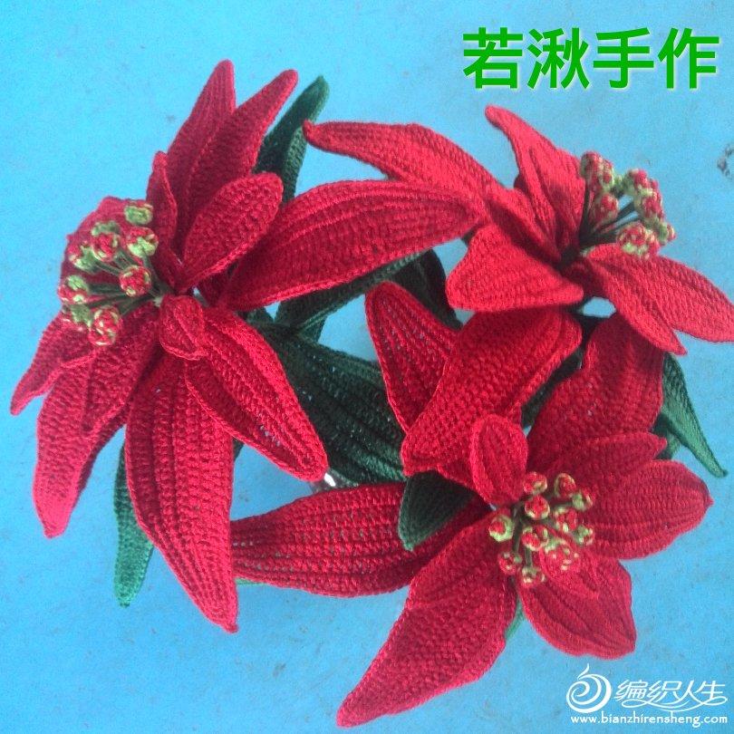 钩针花卉-----圣诞红
