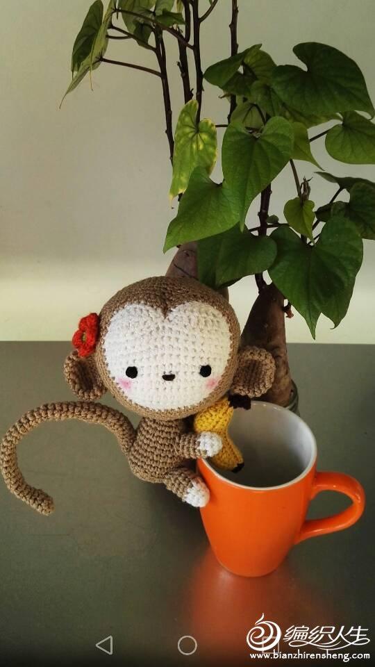 钩针抱香蕉的猴子