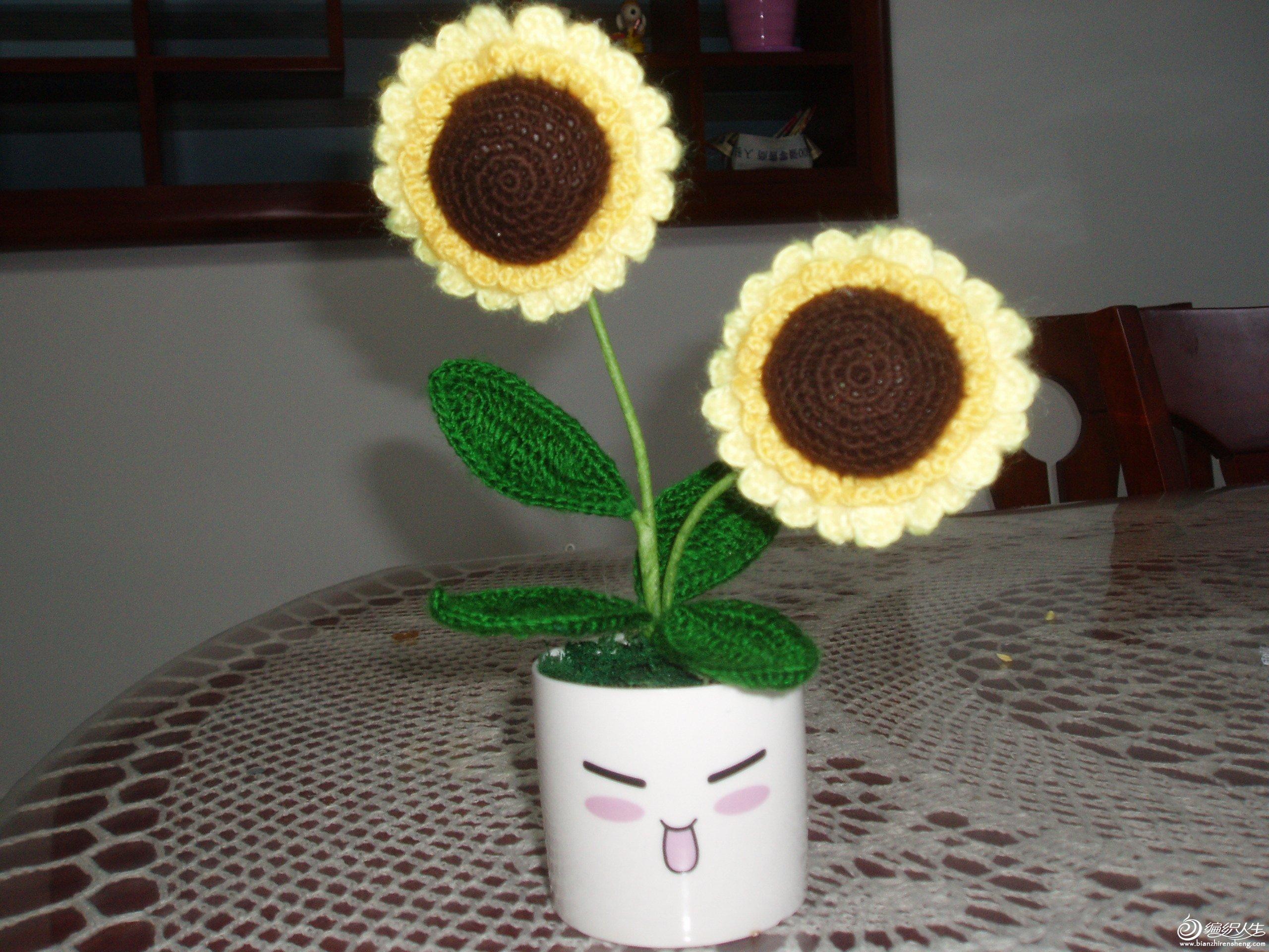 迷你小盆栽,很可爱哦!