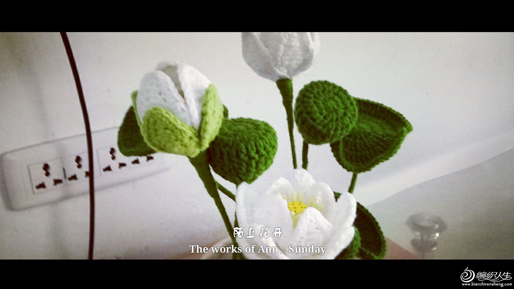 钩针花卉之莲花