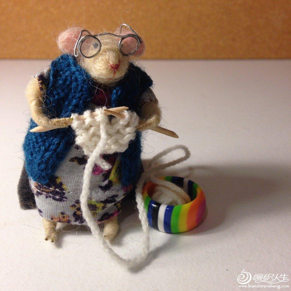 羊毛毡织毛衣的老鼠