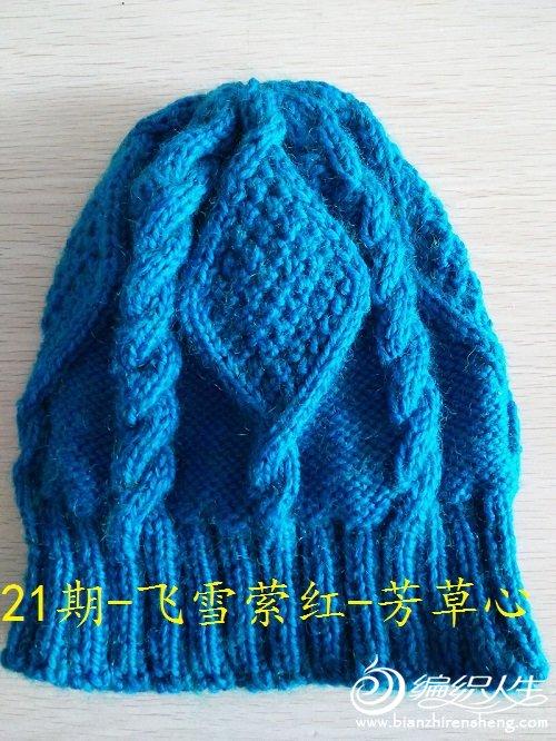 21期-飞雪萦红-芳草心.jpg