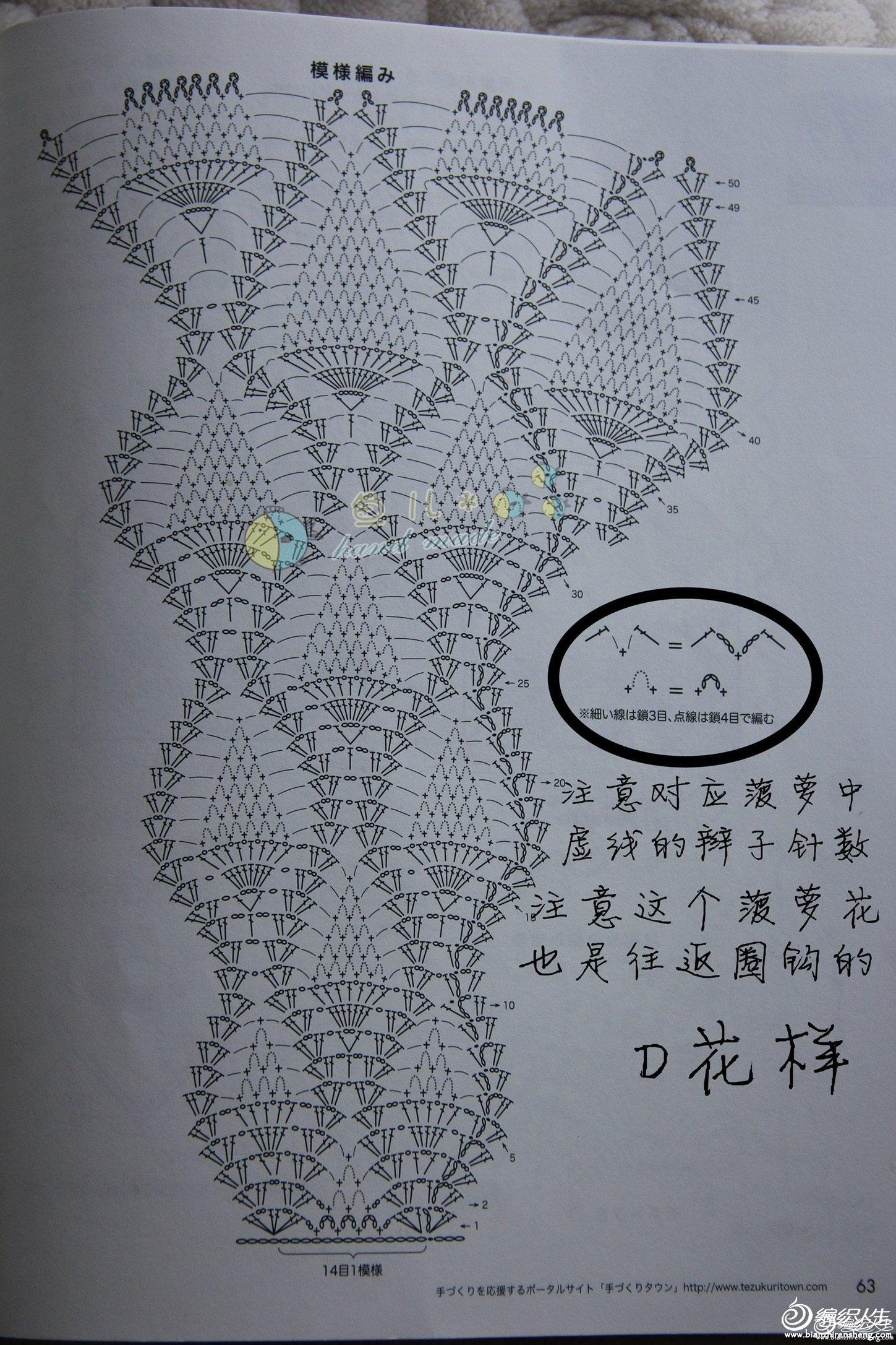 这是菠萝花的图