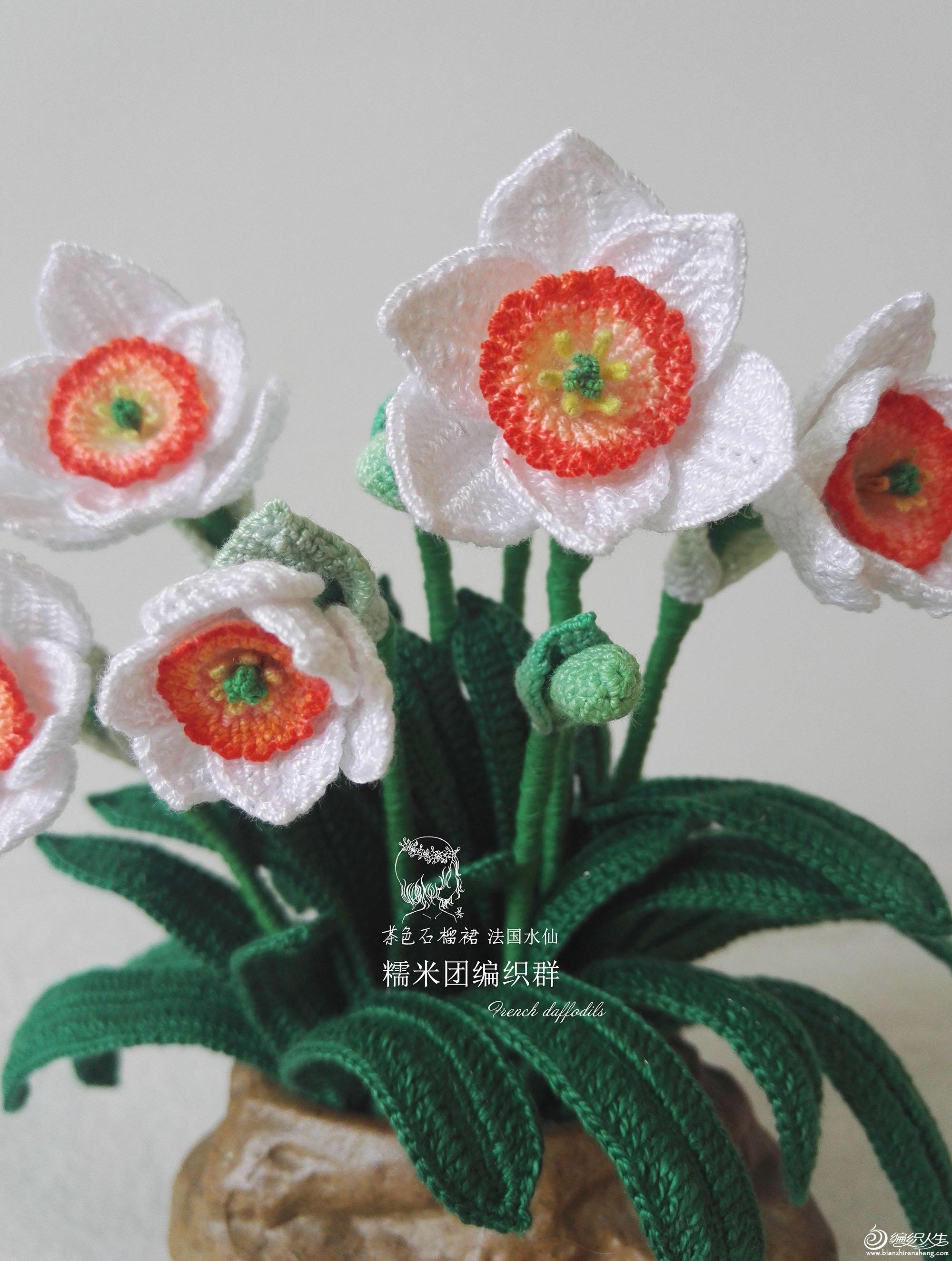 钩针洋水仙编织花卉