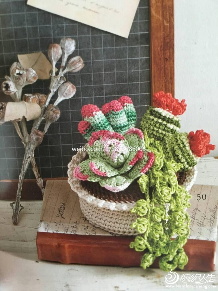 漂亮毛线钩花多肉植物盆栽与向日葵花钩针图解
