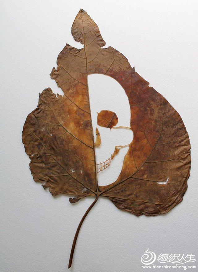 extraordinary-leaf-artwork-by-lorenzo-duran-6.jpg