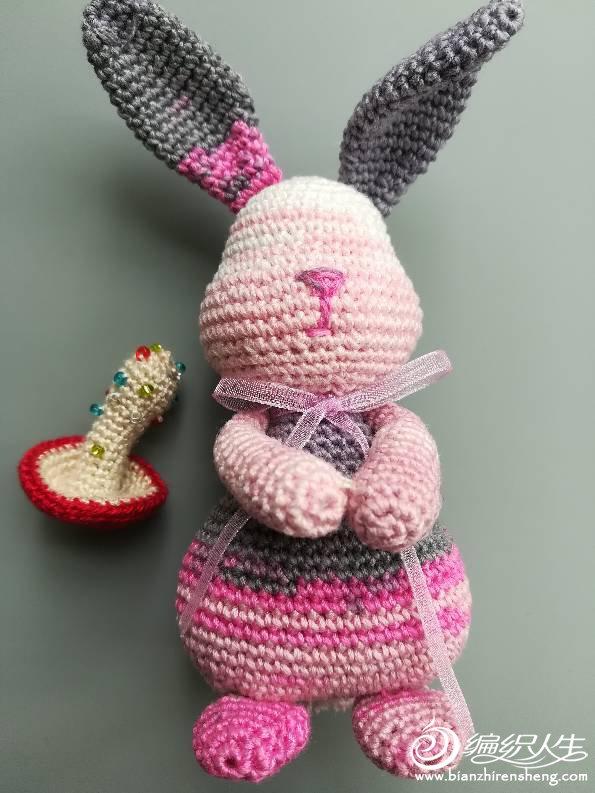 段染蕾丝兔子