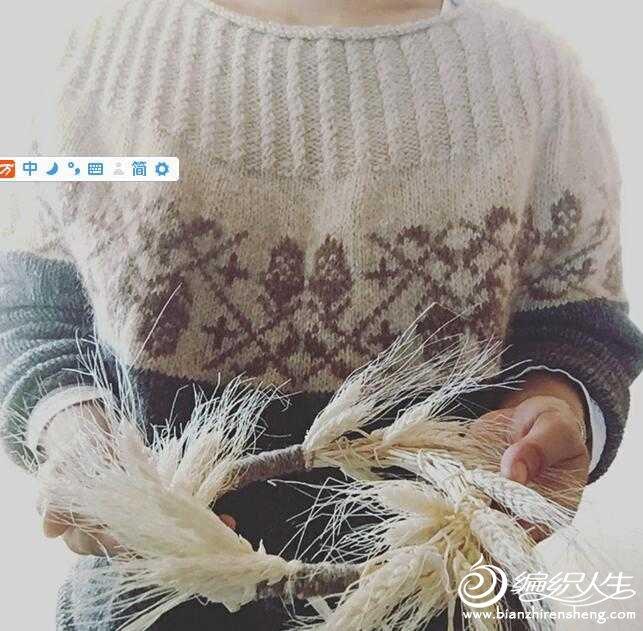 【引用 六月雪手工】醇咖橡果+水墨橡果 - 壹一 - 壹一编织博客