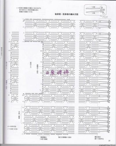 【浅唱七夕】银狐狸——流苏镂空衫 - ysp1966 - 快乐心情的博客