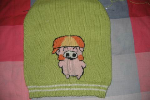 毛衣的前面和后面(未完工的)
