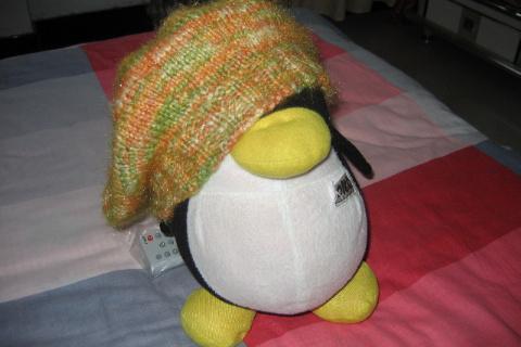 我的帽子(让QQ替我秀一把)