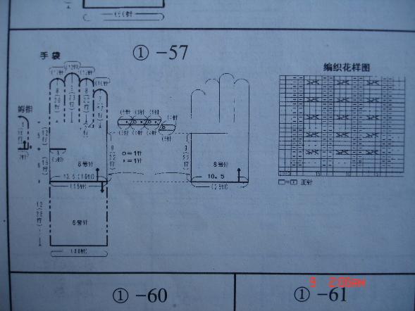 DSC00445_00.JPG