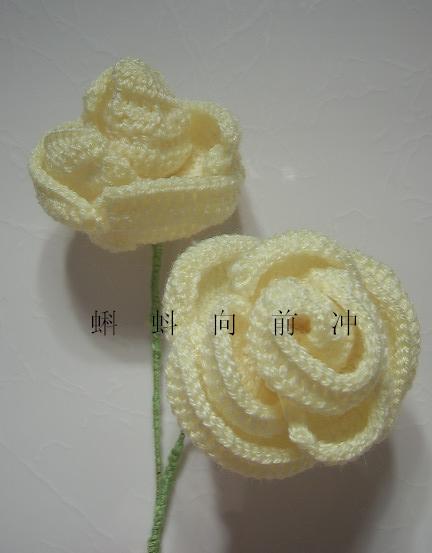 ROSE (8).JPG