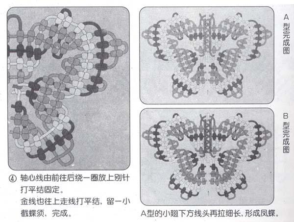 蝴蝶-3.jpg