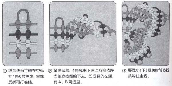蝴蝶-2.jpg