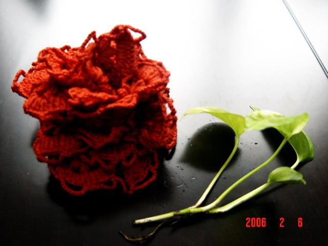 一朵花的围巾