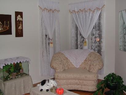 窗帘和茶几罩