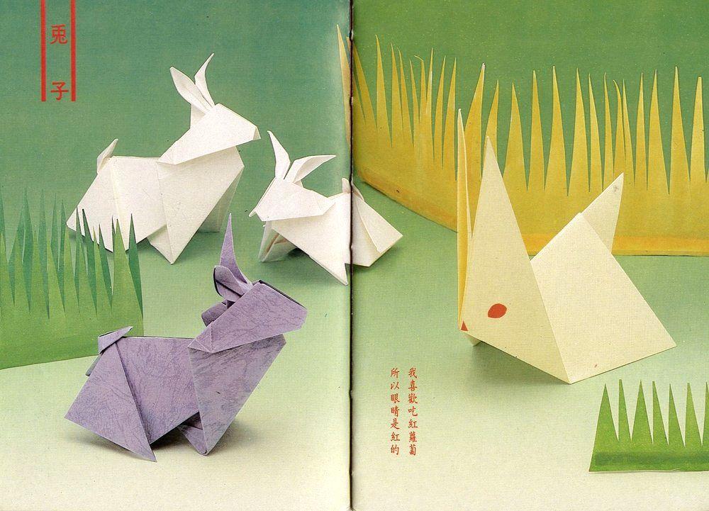 31兔子.jpg