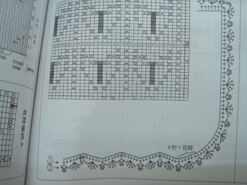 DSC02343-1.jpg