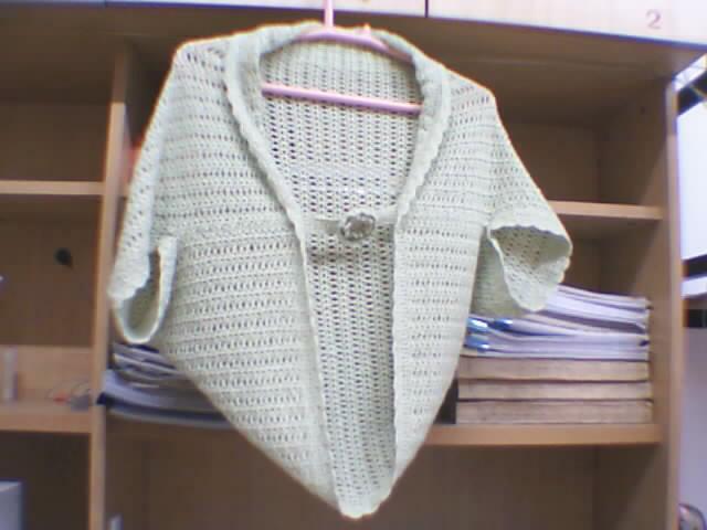 这是模仿坛子里的披肩式背心钩的,线太细,换了个小花样,到现在也没有穿出去过呢