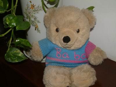 我家小熊的毛衣!