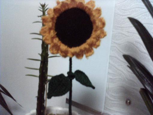 乱真的向日葵