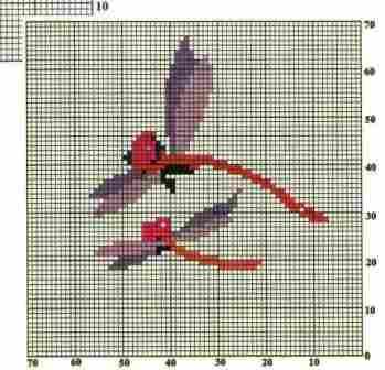蜻蜓1.jpg