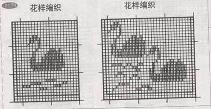 动物50.JPG