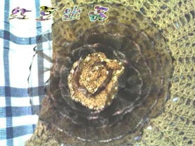 用纱质花边扎的花~中间用线线钩的花心