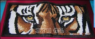 在别的论坛看到的老虎眼钱包--超漂亮的