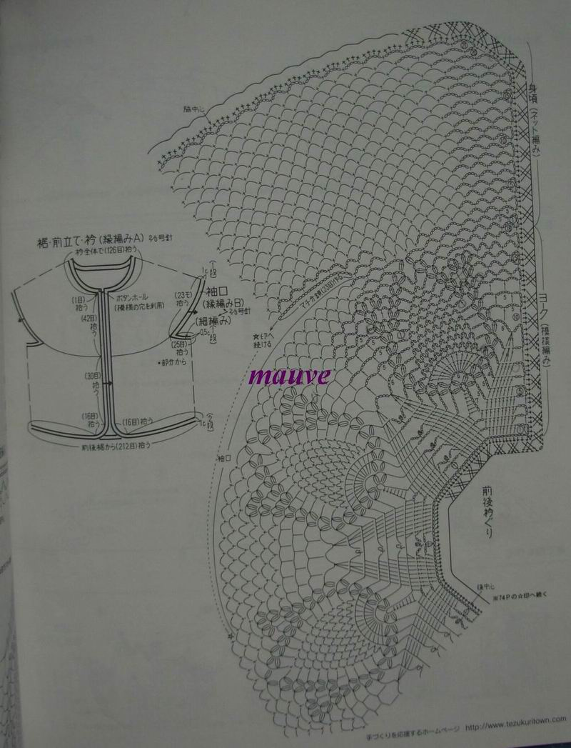 菠萝花YY1..jpg