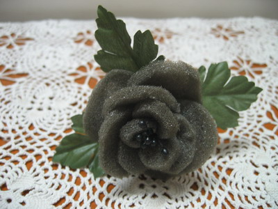 黑海绵玫瑰花