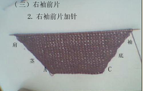 紫色32.jpg