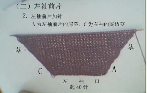 紫色22.jpg