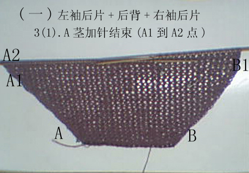 5-1紫色13-1.jpg