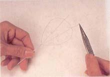 4. 将两根支架平均分开,并绕在花瓣上方1圈固定。