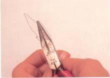 9. 找出花托顶点位置后,将花托形状塑造好。