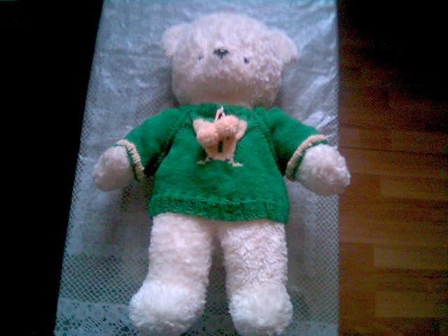 熊衣1.jpg